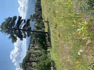 Tbd Sugarloaf Mountain Lane, Cascade, MT 59421 (MLS #22010129) :: Dahlquist Realtors