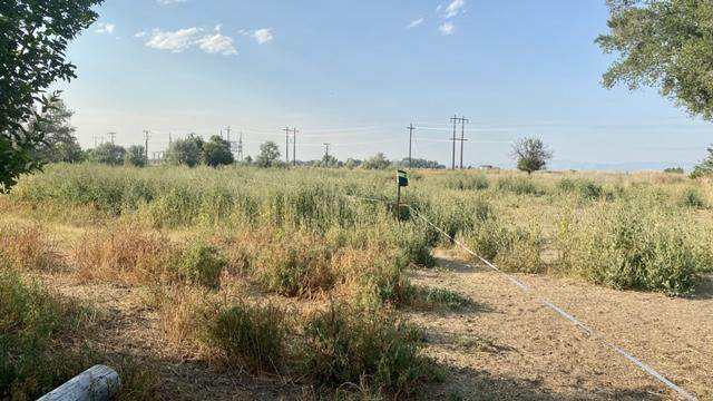Tbd M&B Tract, Townsend, MT 59644 (MLS #22013484) :: Andy O Realty Group