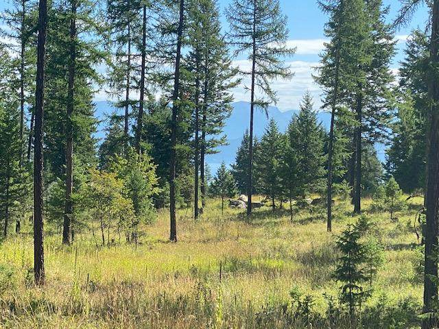 Nhn Skookum Road, Lakeside, MT 59922 (MLS #22013720) :: Whitefish Escapes Realty