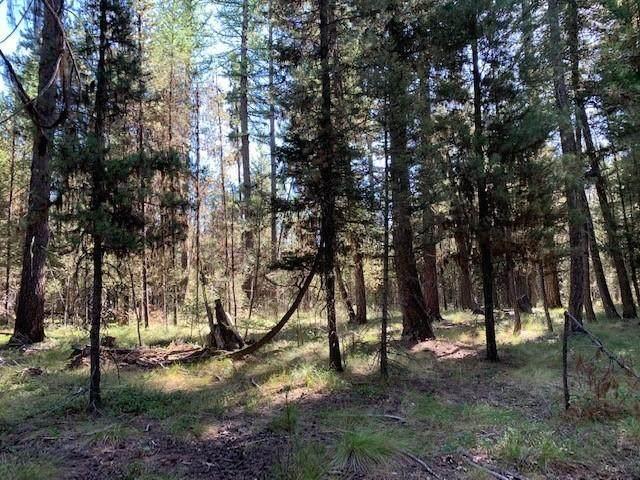 Nhn Lemar Drive, Seeley Lake, MT 59868 (MLS #22014313) :: Andy O Realty Group
