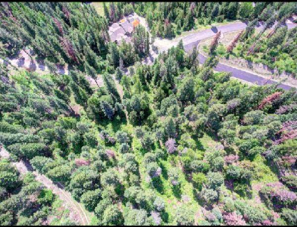 211 Arrowhead Drive, Whitefish, MT 59937 (MLS #22015060) :: Whitefish Escapes Realty