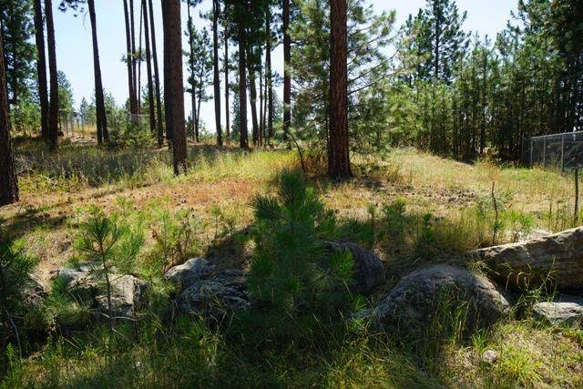 Lot 16 Spike Court, Ronan, MT 59864 (MLS #22100039) :: Performance Real Estate