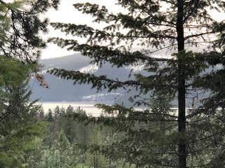 Nhn Ocallahan Lane, Trout Creek, MT 59874 (MLS #22100081) :: Andy O Realty Group