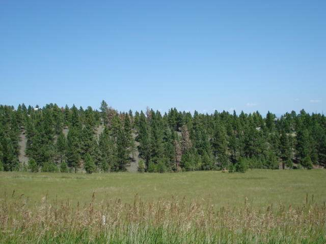 Tbd Sawmill Road, Montana City, MT 59634 (MLS #22100984) :: Andy O Realty Group