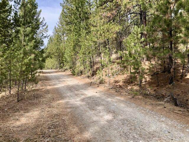 Nhn Lower Lost Prairie Road, Marion, MT 59925 (MLS #22104773) :: Whitefish Escapes Realty