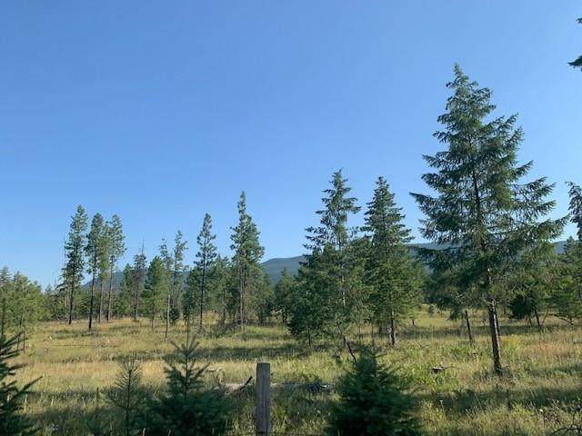 Lot 4 Trout Creek Road, Trout Creek, MT 59874 (MLS #22104891) :: Andy O Realty Group