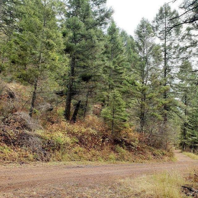 Lot 36 Copper Ridge Road, Florence, MT 59833 (MLS #22105365) :: Peak Property Advisors