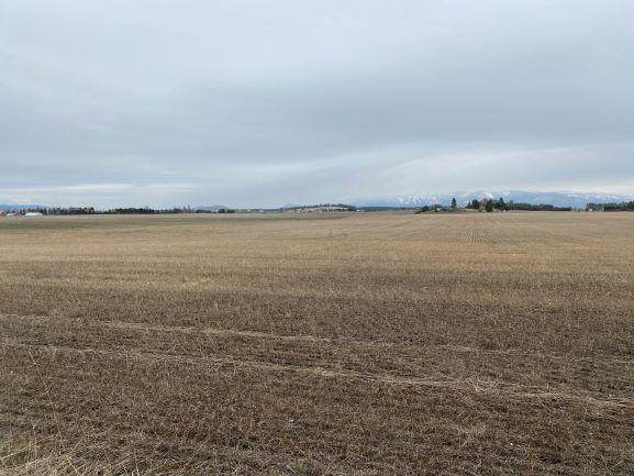 Nhn Tronstad Road, Kalispell, MT 59901 (MLS #22105713) :: Andy O Realty Group