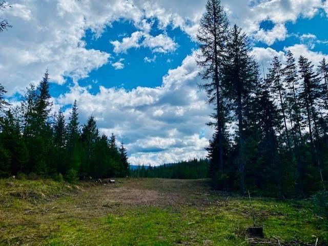 Nhn Beaver Creek Road, Heron, MT 59844 (MLS #22106377) :: Montana Life Real Estate