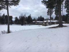 107 Spyglass Hill Loop, Columbia Falls, MT 59912 (MLS #22110039) :: Dahlquist Realtors