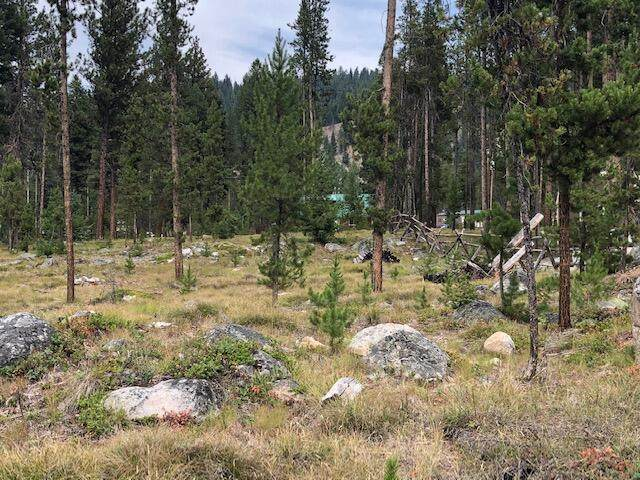 Lot 14 Bonanza Lands, Sula, MT 59871 (MLS #22112993) :: Peak Property Advisors