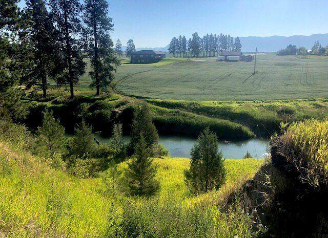 247 Harvest View Lane, Kalispell, MT 59901 (MLS #22114401) :: Andy O Realty Group