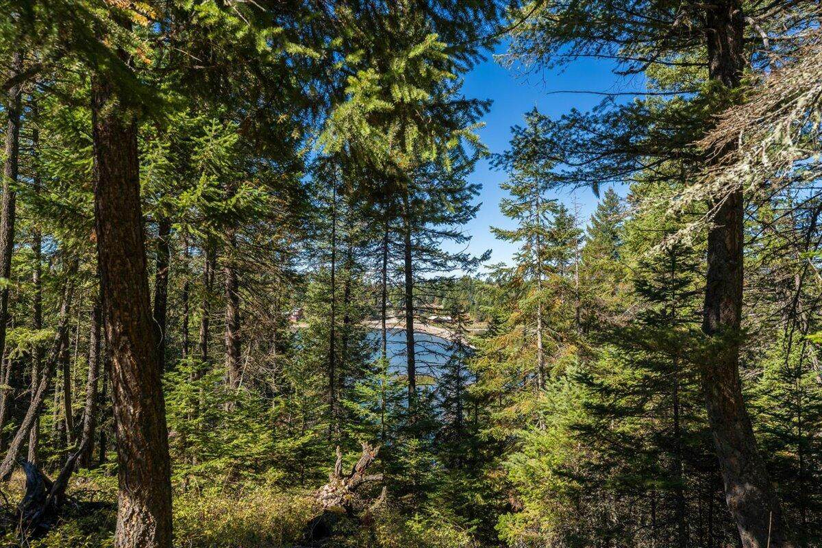 1370 Echo Lake Road - Photo 1