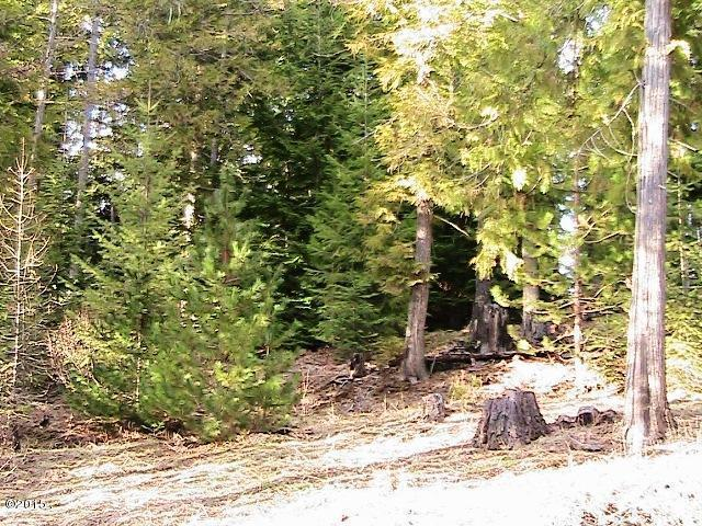 68 Cherub Lake Road, Troy, MT 59935 (MLS #332896) :: Keith Fank Team