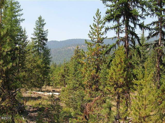 Lot 38 Parkside At Fisher River, Libby, MT 59923 (MLS #21610839) :: Andy O Realty Group