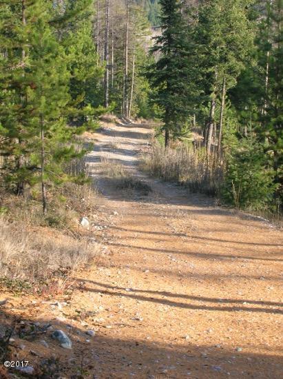 2295 Wild Bill Road, Kila, MT 59920 (MLS #21701404) :: Andy O Realty Group