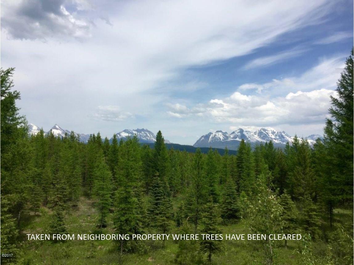 15750 North Fork Road - Photo 1