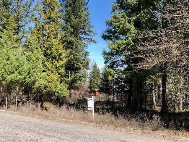Renwood Drive, Libby, MT 59923 (MLS #21800438) :: Loft Real Estate Team