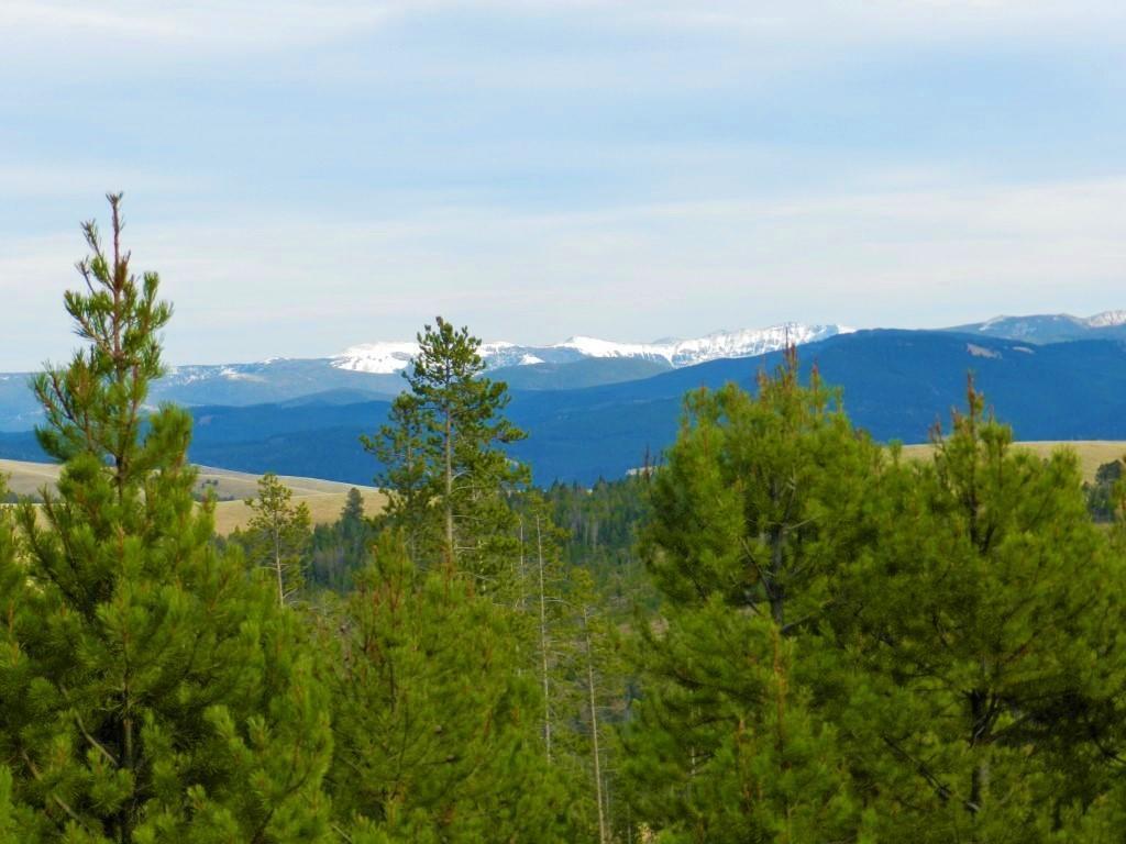 Tbd Moose Spring Trail - Photo 1
