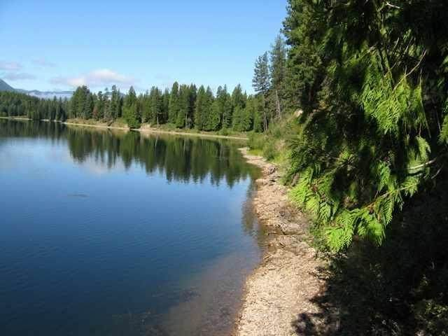 Nhn Lake Drive, Heron, MT 59844 (MLS #22101581) :: Whitefish Escapes Realty
