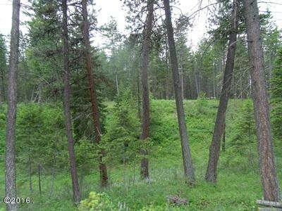 119 Timber Shadow Trail, Polson, MT 59860 (MLS #21606764) :: Dahlquist Realtors