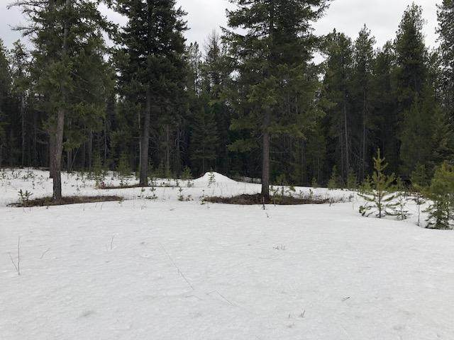 Nhn Lake Five Road, West Glacier, MT 59936 (MLS #22002247) :: Whitefish Escapes Realty