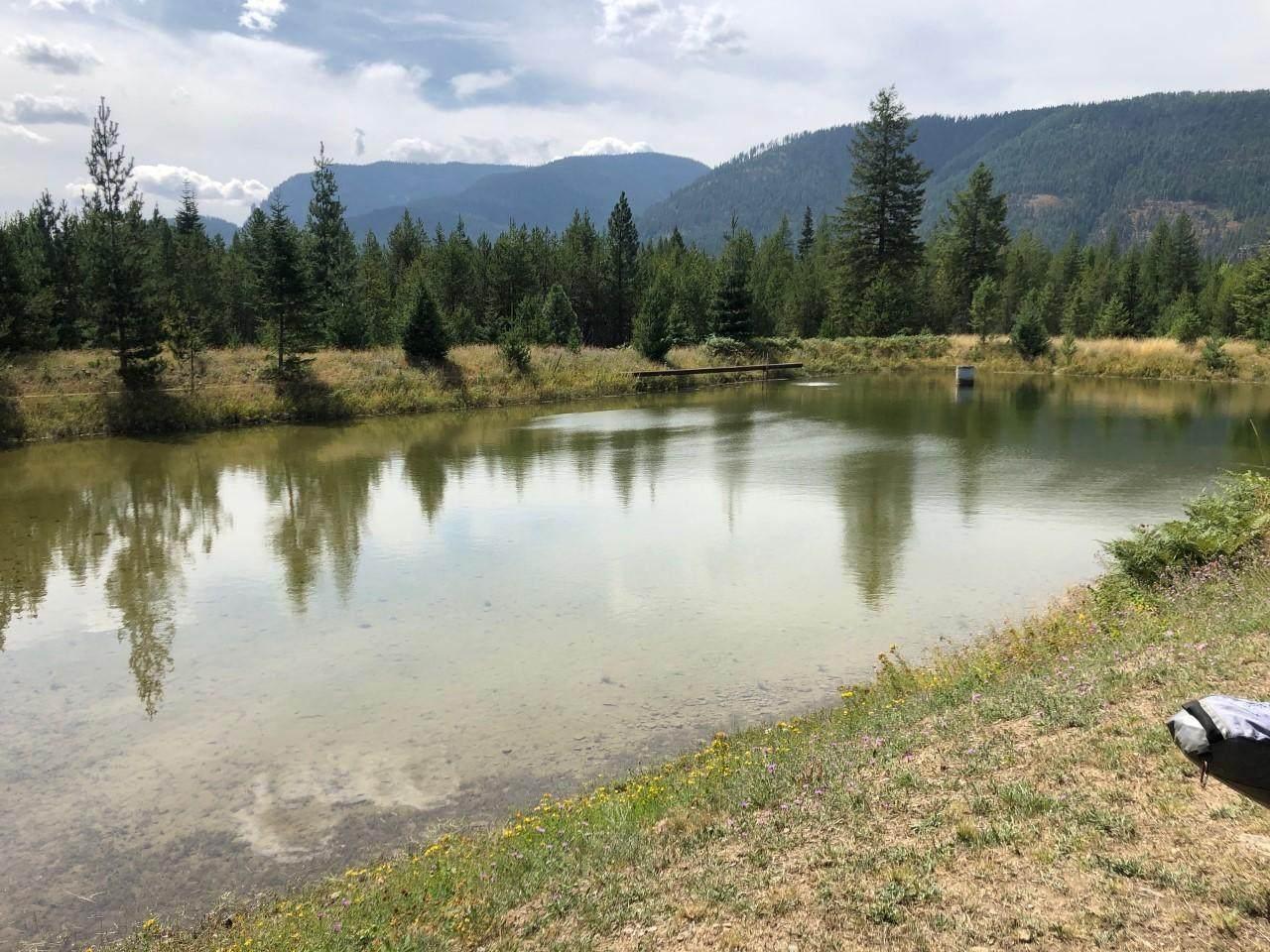 12534 Bull Lake Road - Photo 1