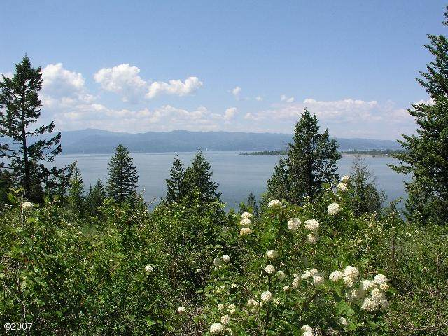 275 Whisper Ridge Drive, Bigfork, MT 59911 (MLS #306632) :: Whitefish Escapes Realty