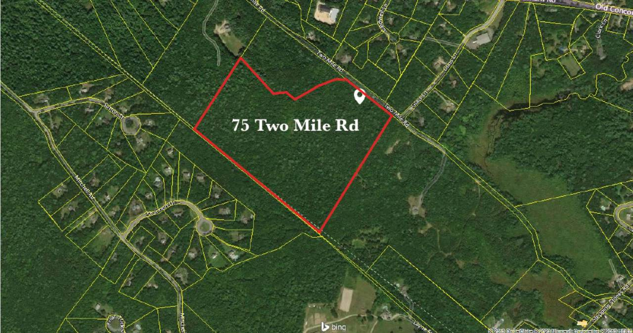 75 Two Mile Road - Photo 1