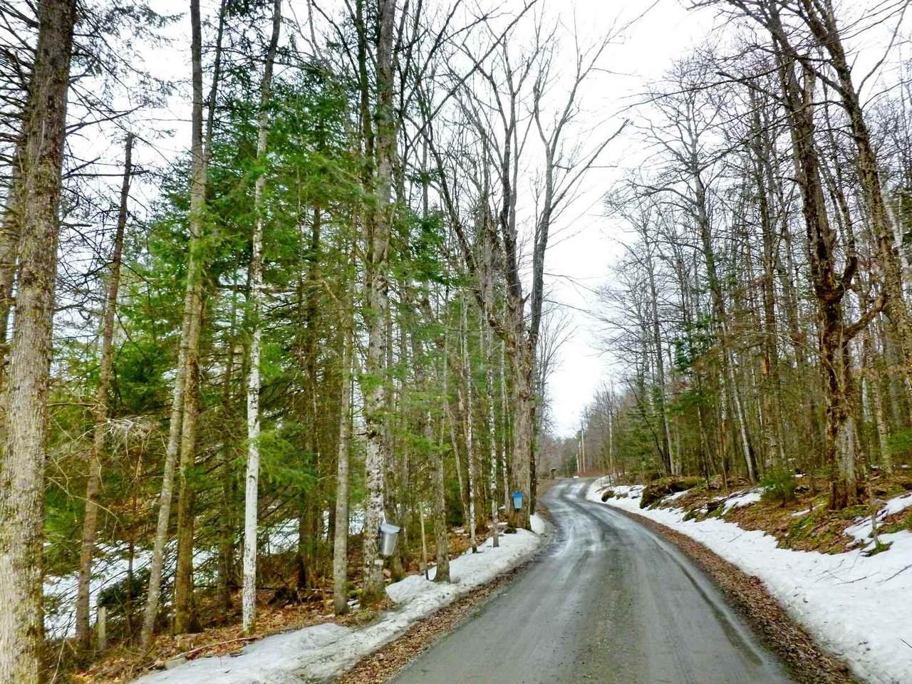 Mullikin Brook Road - Photo 1