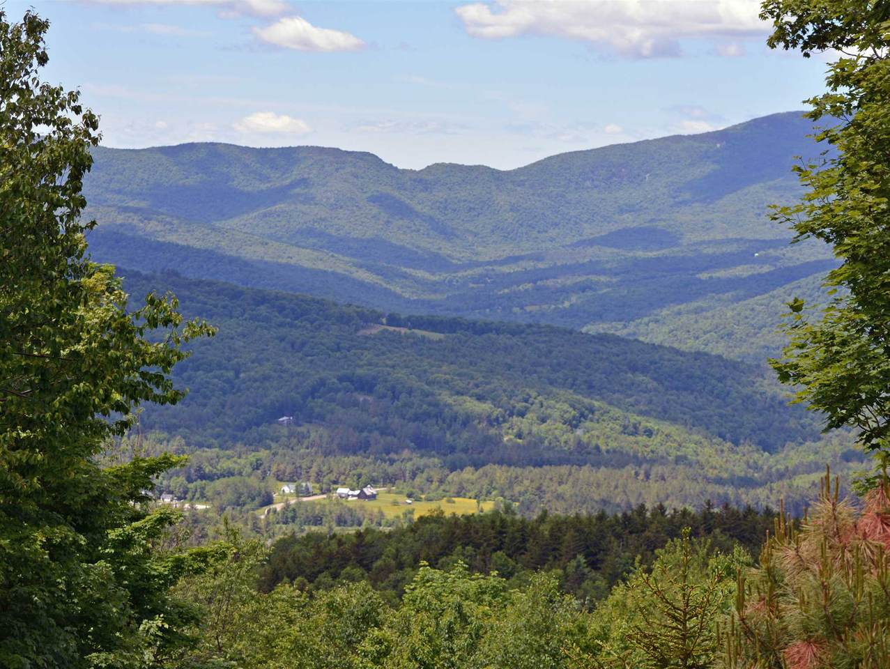 1563 Roxbury Mountain Road - Photo 1