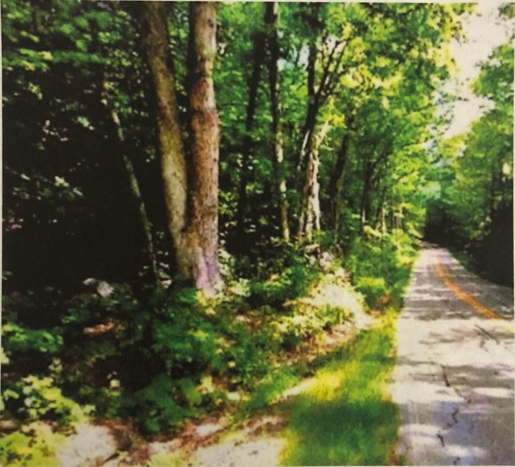 403 Lakeshore Drive - Photo 1