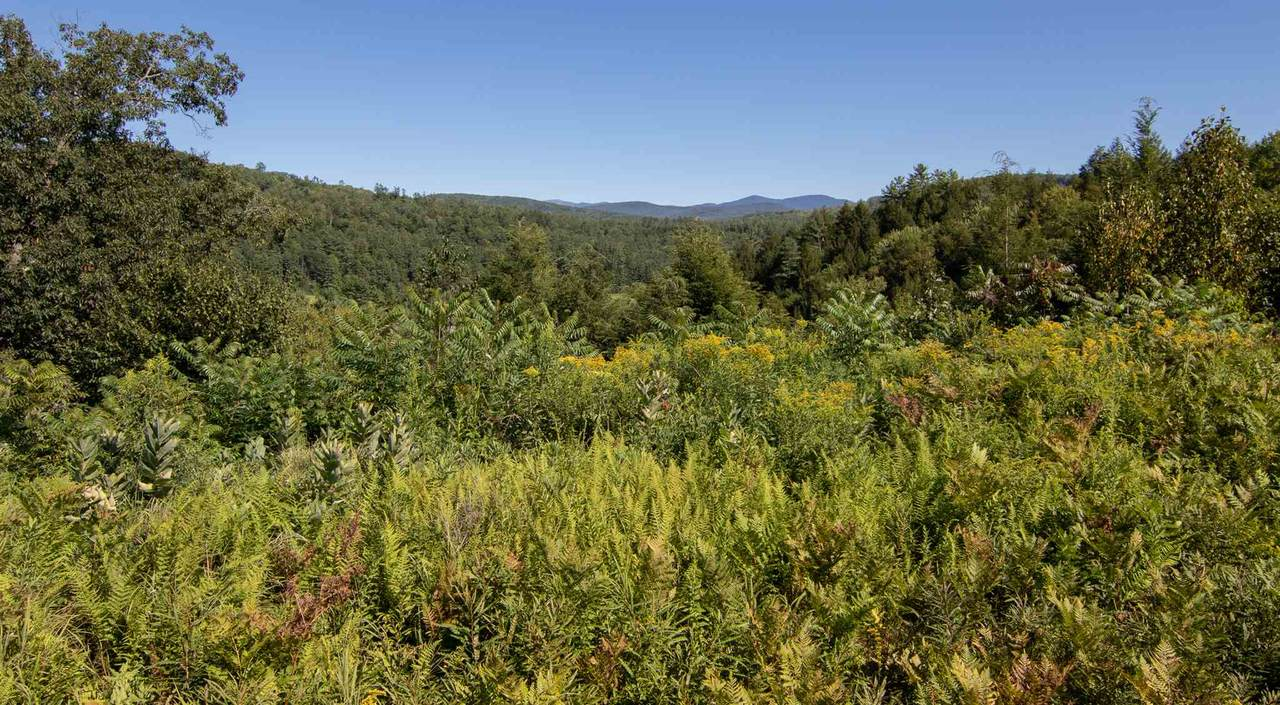 Lot 43 & 44 Ammonoosuc Avenue - Photo 1