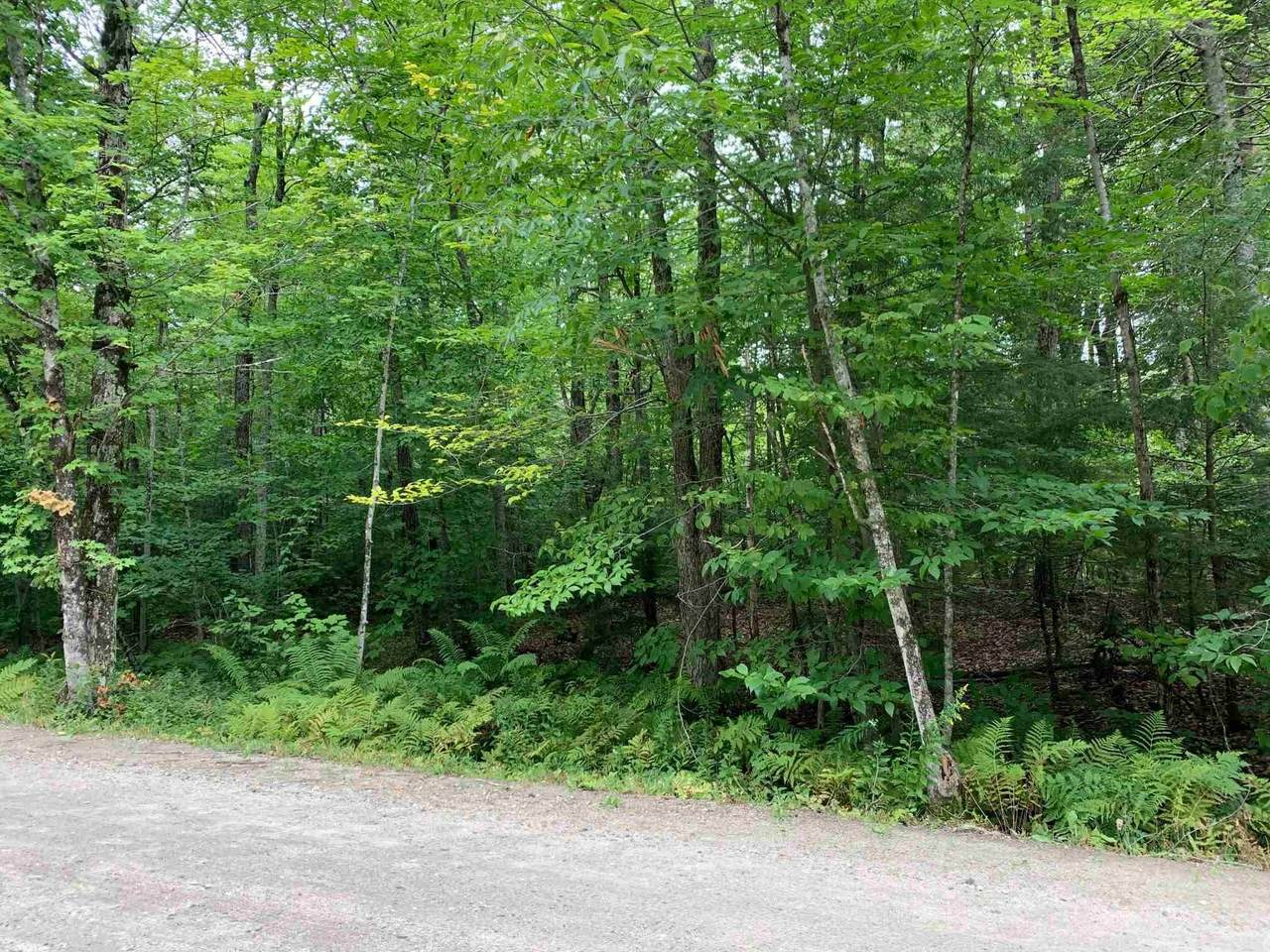 0 Windham Hill & Burbee Pond Road - Photo 1
