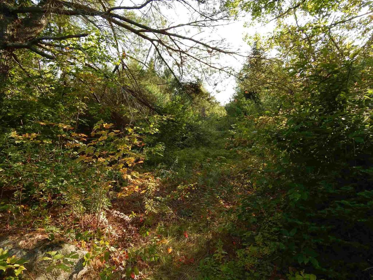 George Hill Road - Photo 1