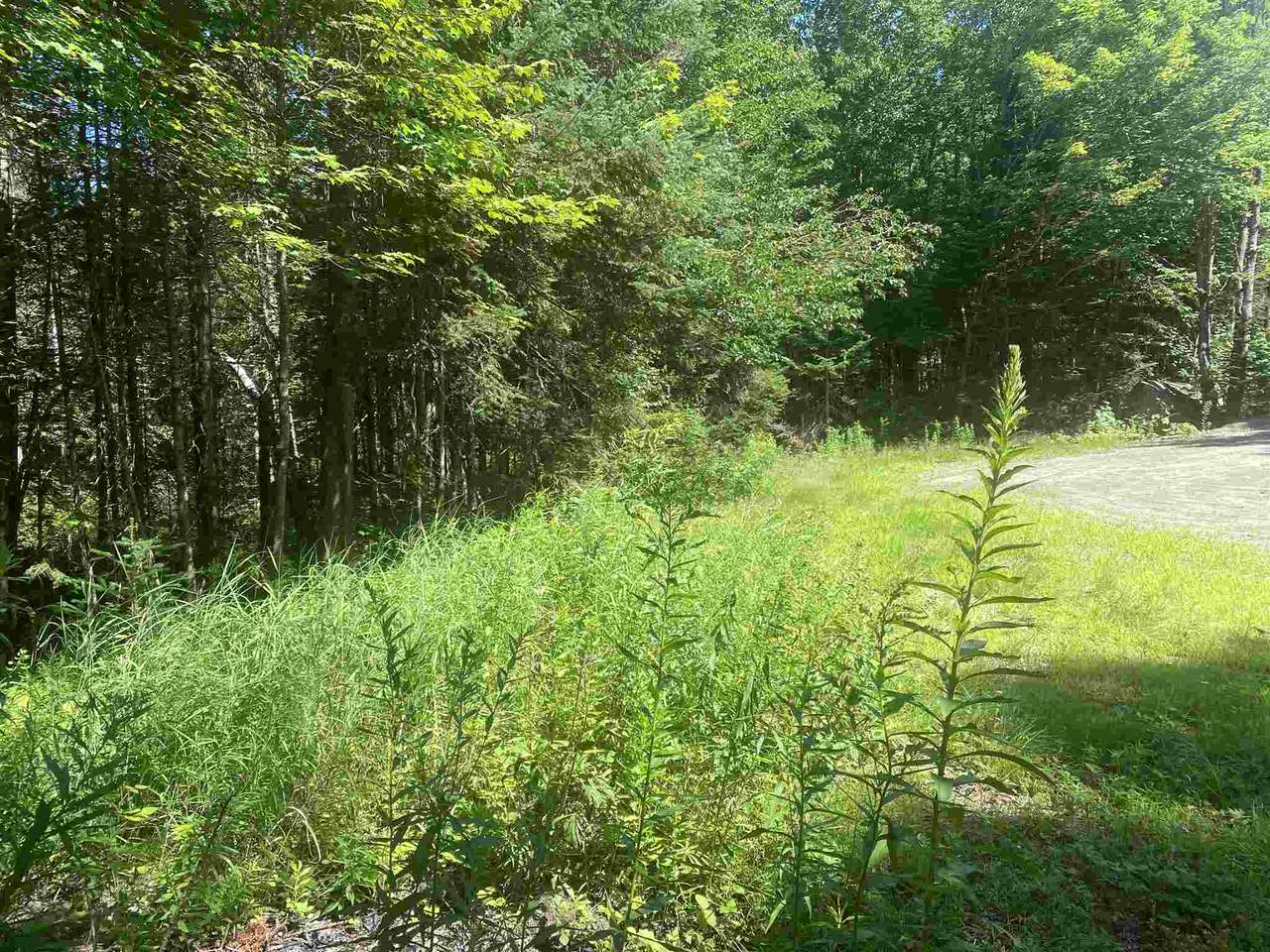 15 Hampshire Woods - Photo 1
