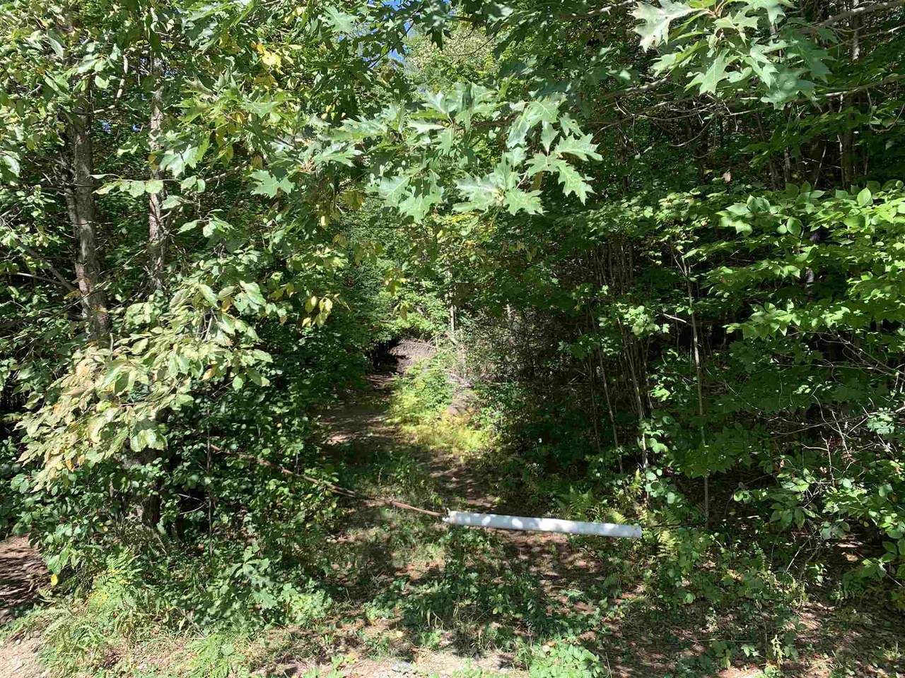 52 East Putney Brook Road - Photo 1