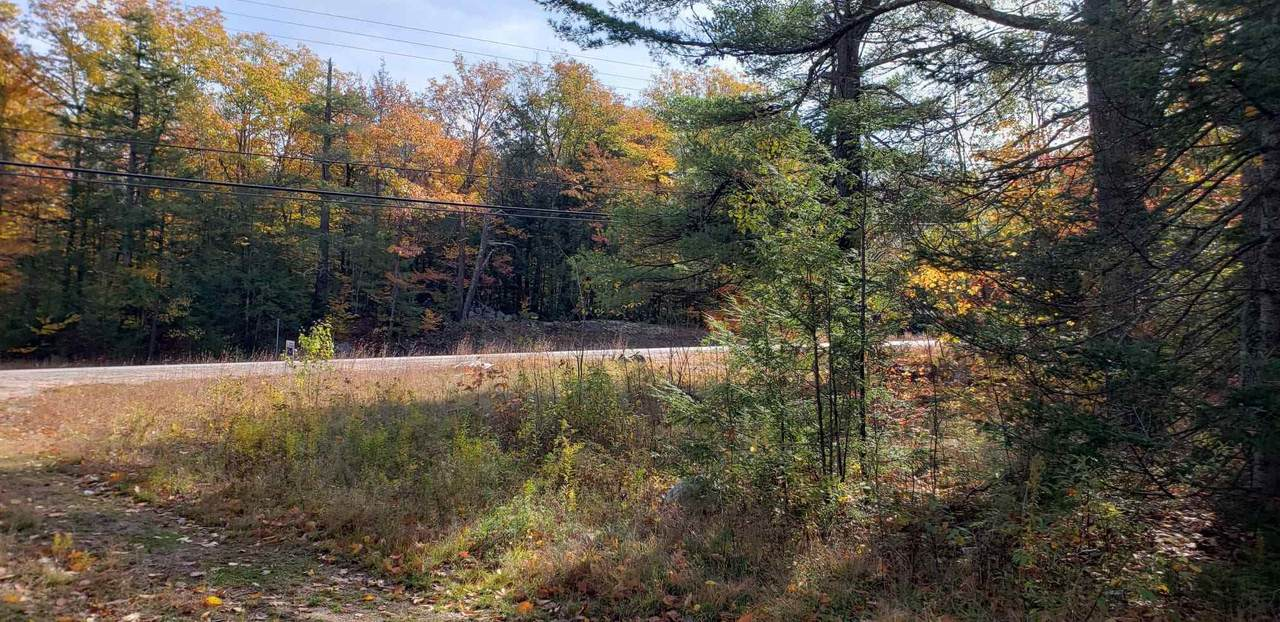 1195 Nh Route 16 - Photo 1