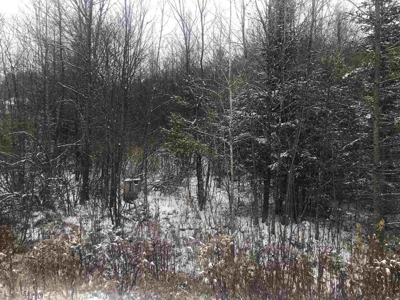 Lot #4 Waterford Hollow Lane - Photo 1