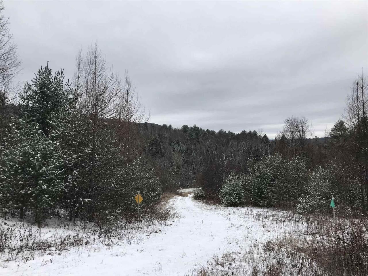 Lot #6 Waterford Hollow Lane - Photo 1