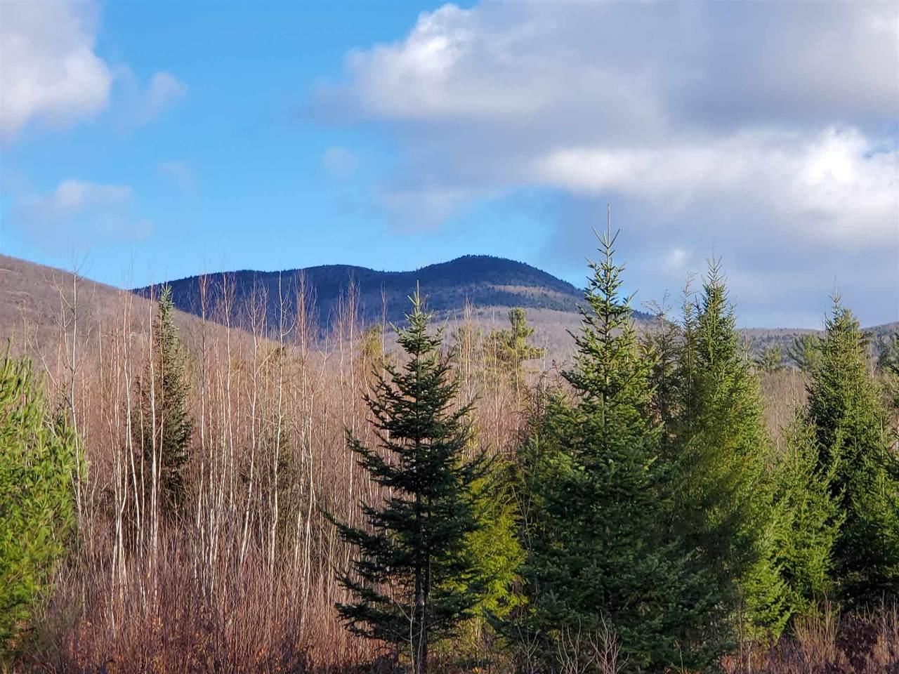 Lot 28 Mountain Shadows Drive - Photo 1
