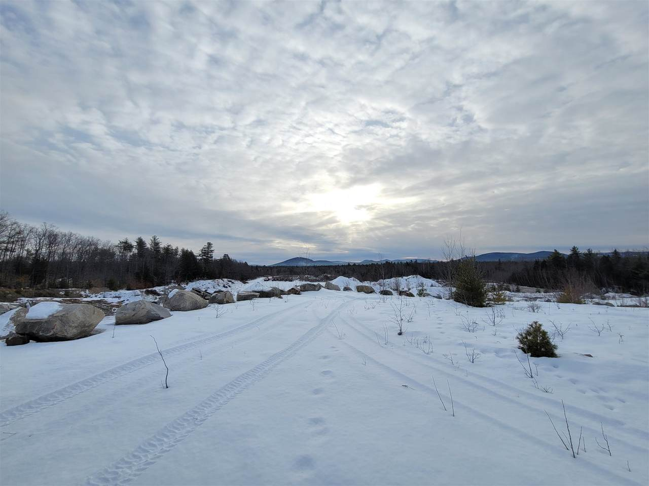 00 East Conway Road - Photo 1