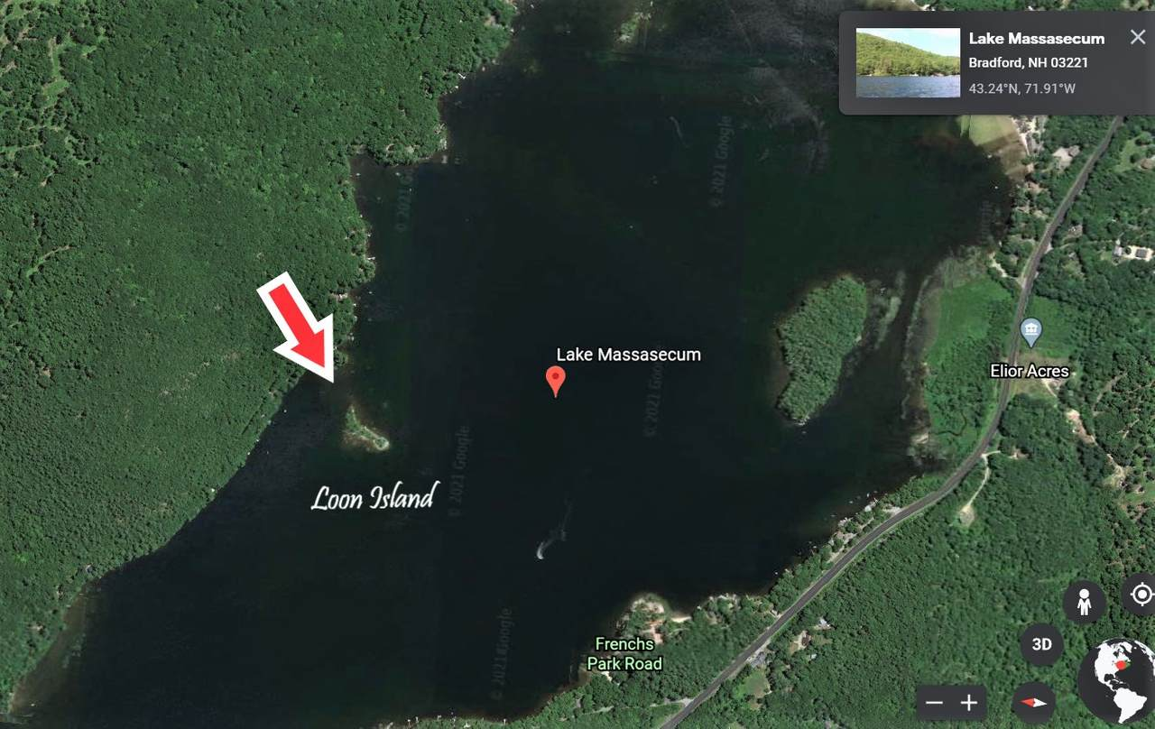 Loon Island - Photo 1