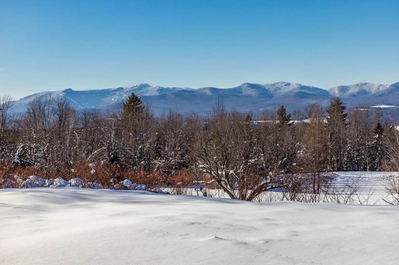 TBD Elmore Mountain Road - Photo 1