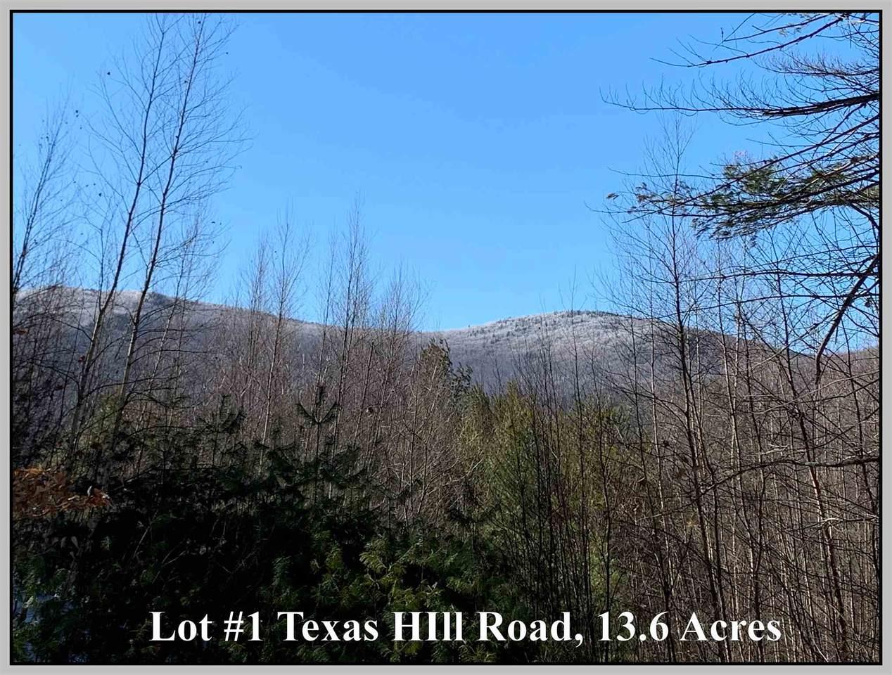 Lot #1 Texas Hill Road - Photo 1