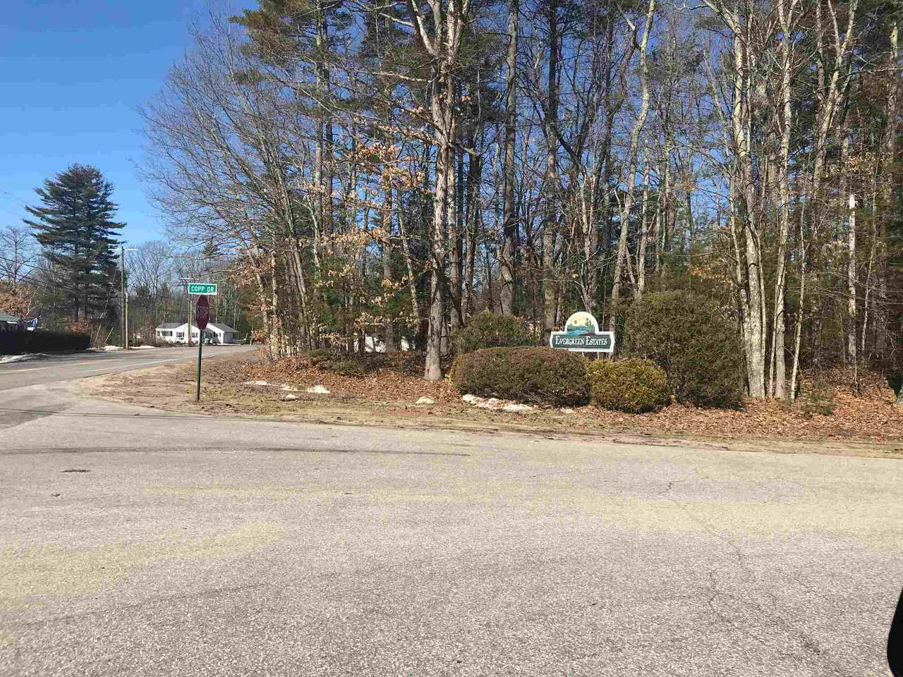 Lot 4 Copp Drive - Photo 1