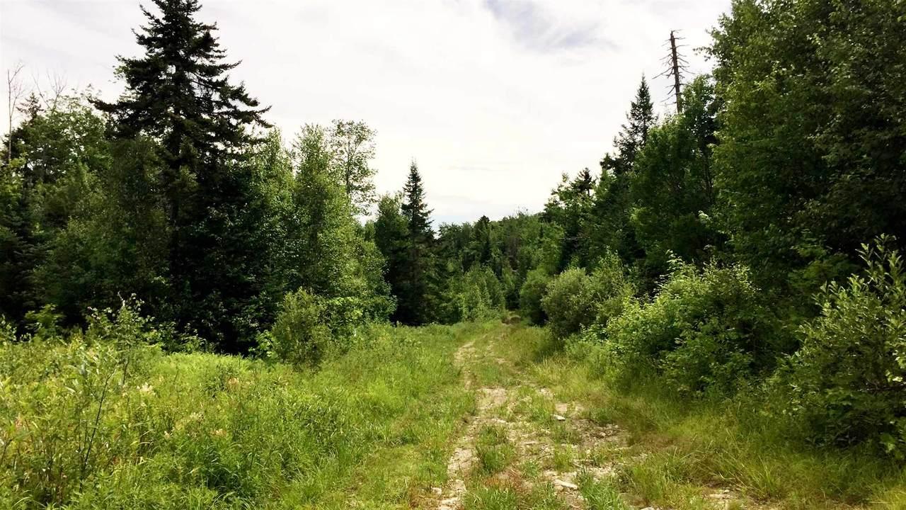 00 Bear Farm Road - Photo 1