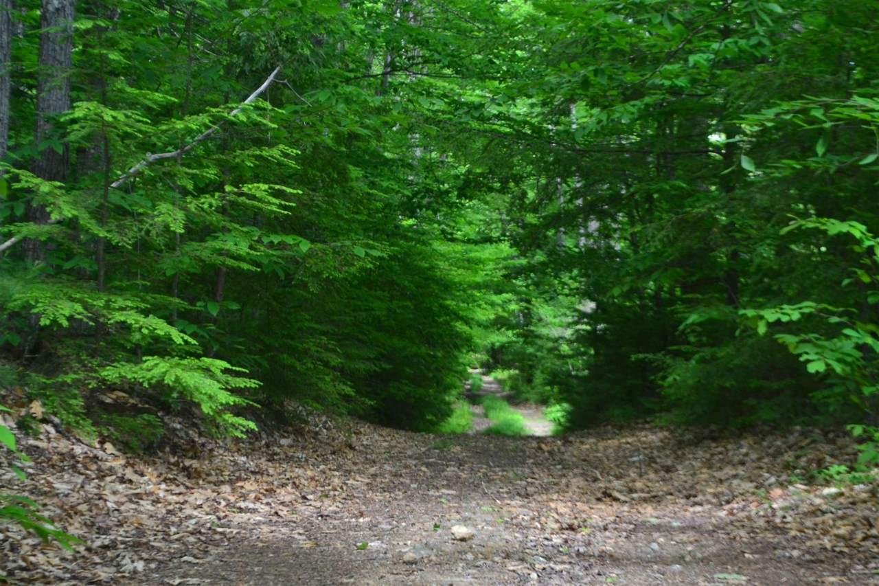 321 Sawtooth Road - Photo 1