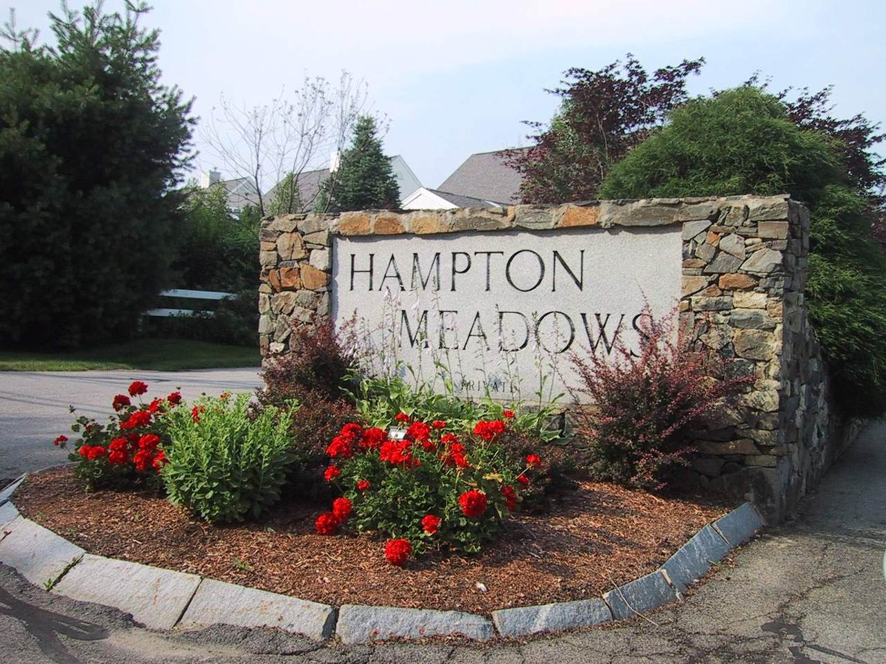 56 Hampton Meadows - Photo 1