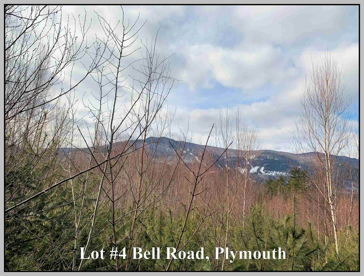 Lot #4 Bell Road - Photo 1